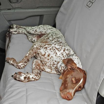 Dog Car Seat Protector, Rear, Gray-XL