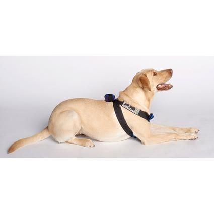 Pink Canine Travel Safe Harness, Medium 1
