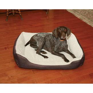 chocolate pet bed