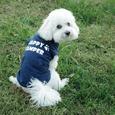 Happy Camper Pet Shirt